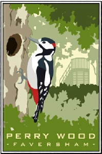 Woodpecker Perry Wood