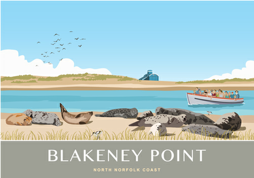 Blakeney Point Seal Trips Beans Boats